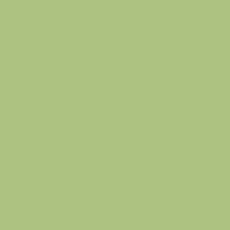 mandala_green_widget